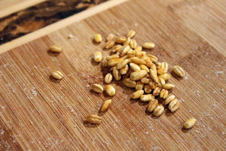 barley medley 003