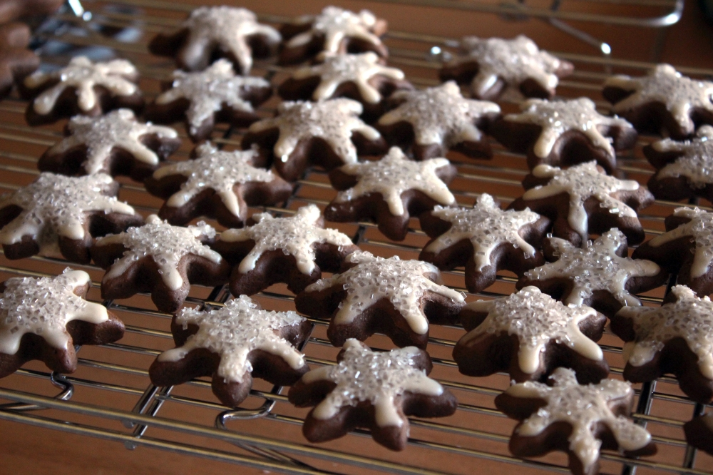 gingerbread-cookies-05