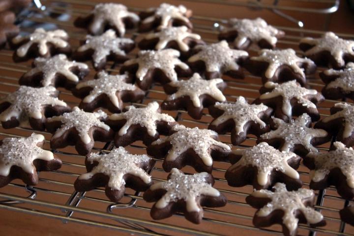 gingerbread-cookies-05